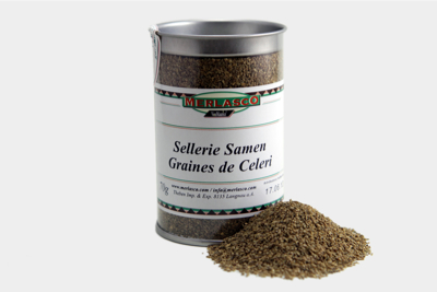 Selleriesamen (Apium graveolens)
