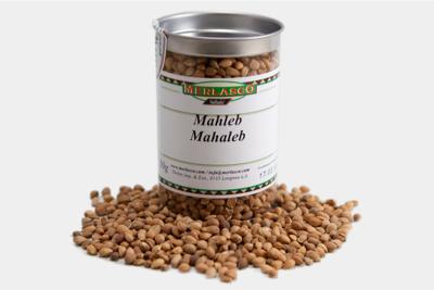 Mahleb (Felsenkirsche) (Prunus mahaleb)