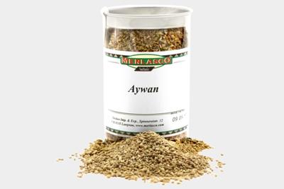Aywan (Ajowan) (Carum copticum)