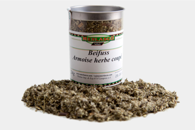Beifuss geschnitten (Artemisia vulgaris)
