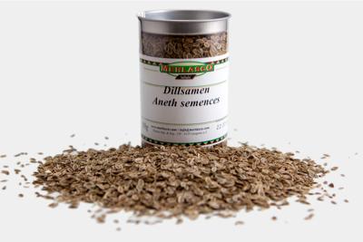 Dillsamen (Anethum graveolens)