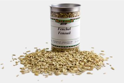 Fenchelsamen (Foenicum vulgare)