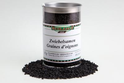 Zwiebelsamen (Allium cepa)