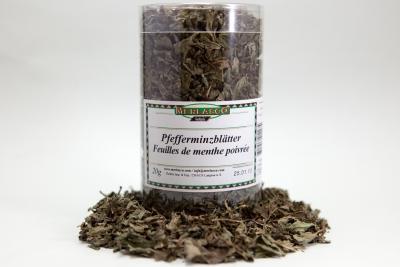 Pfefferminzblätter (mentha piperita)